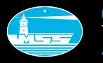 logo_vi1